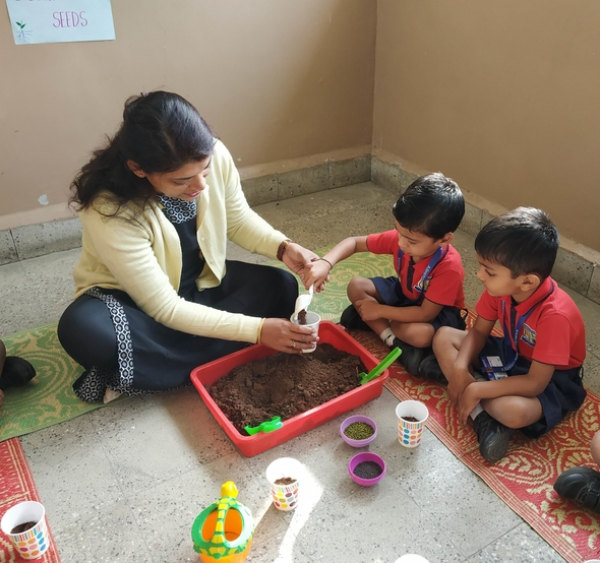 Sowing seeds Activity